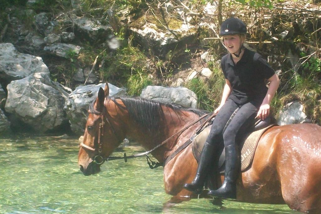 ein Sprung von der Pferderutsche...